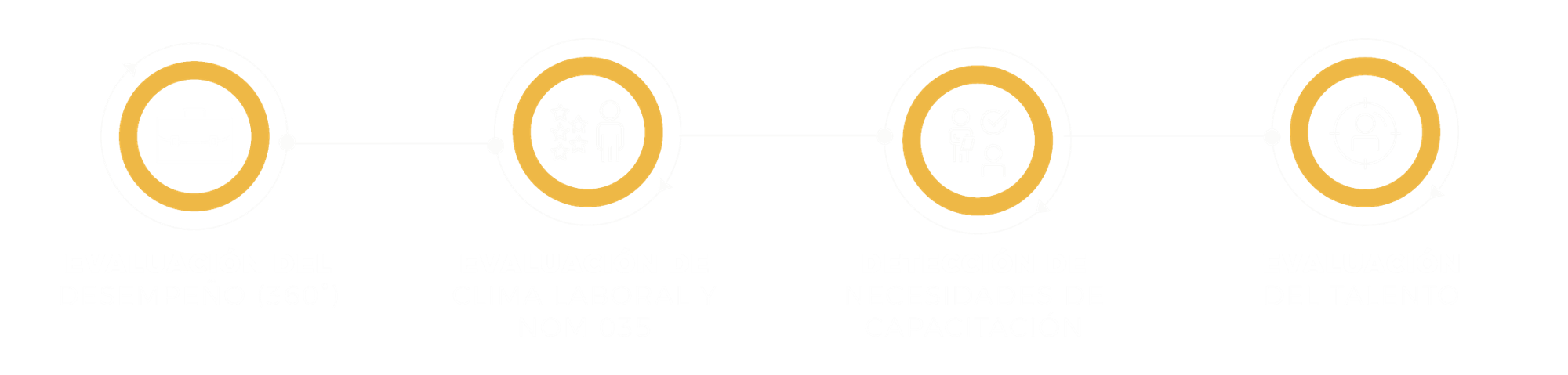 Desarrollo-Organizacional-Zehr-Desarrollo-360