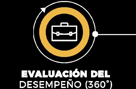 Desarrollo-Organizacional-Zehr-Evaluación-360